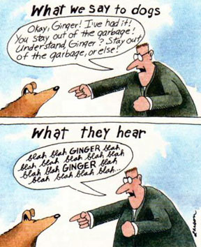 Animal Rights Stand - Animal Humor, Jokes, Funnies, Comics ...